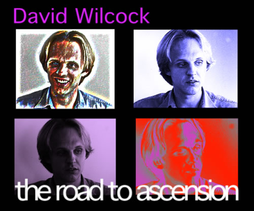 Project Camelot | David Wilcock